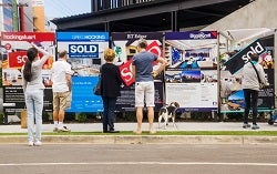 Real estate signs in a row