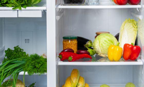 most energy-efficient refrigerators