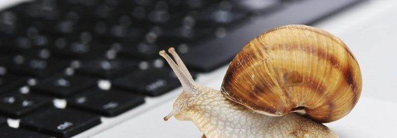 snail internet speed